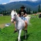FILIP--zásobuje  náš ranč živými zvieratami